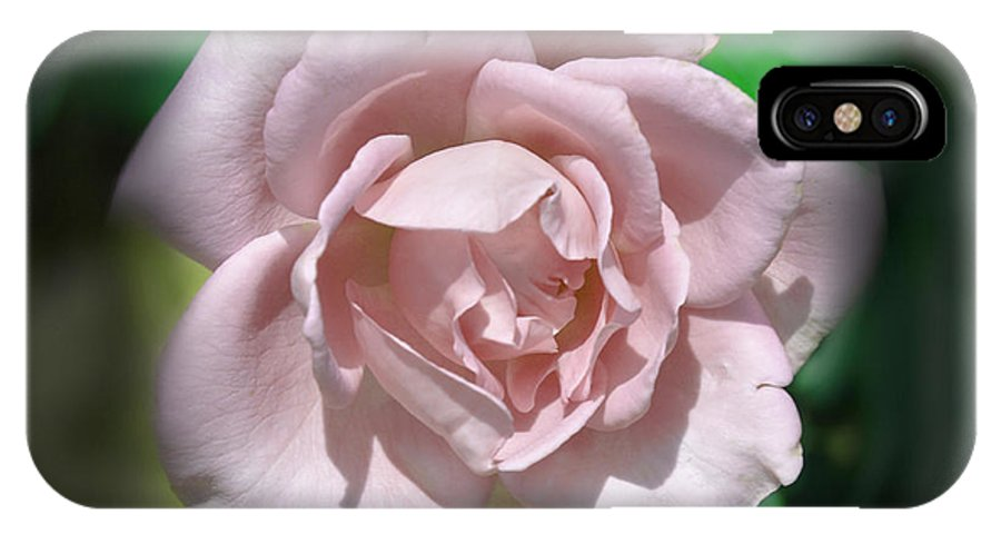 Rose IPhone X Case featuring the photograph Pink Rose by Deborah Good