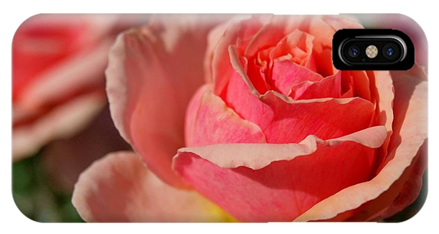 Rose IPhone X Case featuring the photograph Pink Rose by Greg Bush