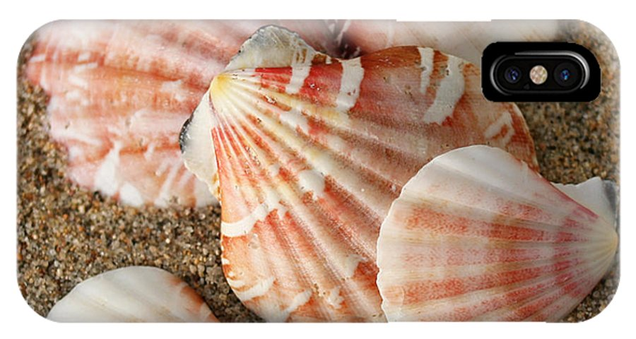 Shells IPhone X Case featuring the photograph Pink Shells by Bob and Jan Shriner
