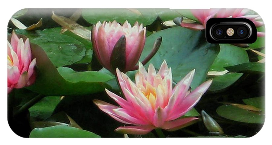 Water Lilies IPhone X Case featuring the photograph Pink Water Lilies by Mimi Saint DAgneaux