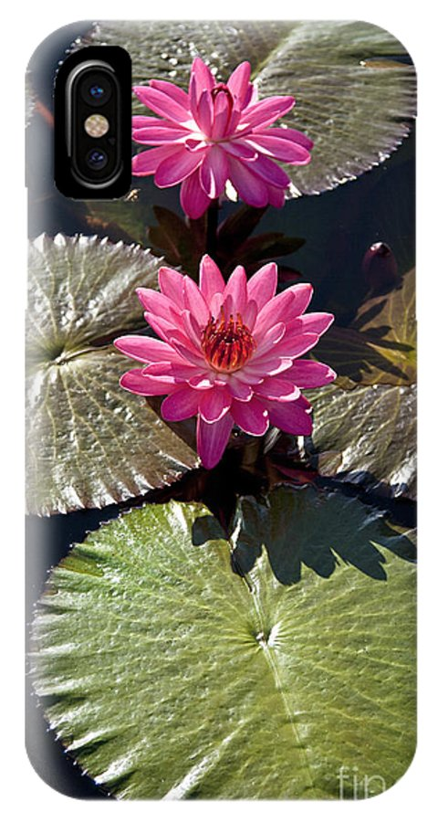Water Llilies IPhone X Case featuring the photograph Pink Water Lily IIi by Heiko Koehrer-Wagner