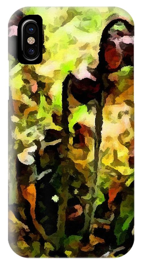 Pitcher Plant Abstraction IPhone X Case featuring the photograph Pitcher Plant Abstraction by Barbara Griffin