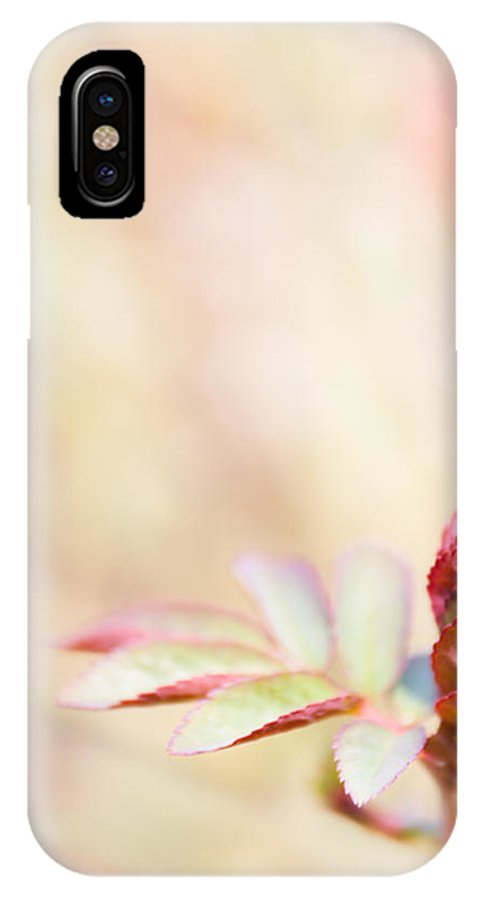 Foliage IPhone X Case featuring the photograph Plant Frills by Lenny Carter