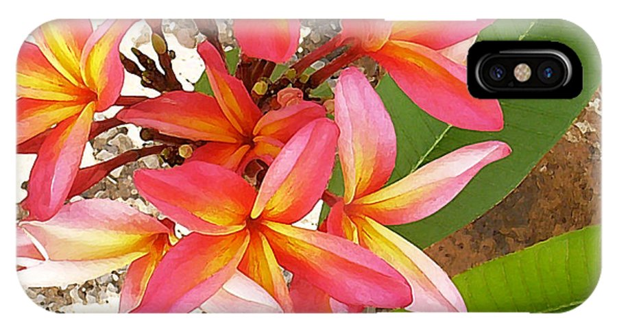 Hawaii Iphone Cases IPhone X Case featuring the photograph Plantation Plumeria by James Temple