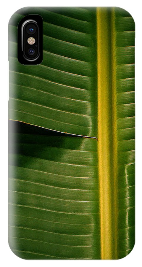 Platano IPhone X Case featuring the photograph Platano by Guillermo Rodriguez