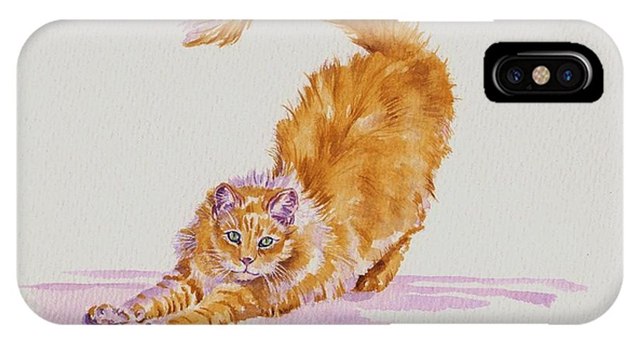 Cat Cats Kitten Kittens Marmalade Cute Fluffy Animals Pet Pets IPhone X Case featuring the painting Play With Me...please by Debra Hall