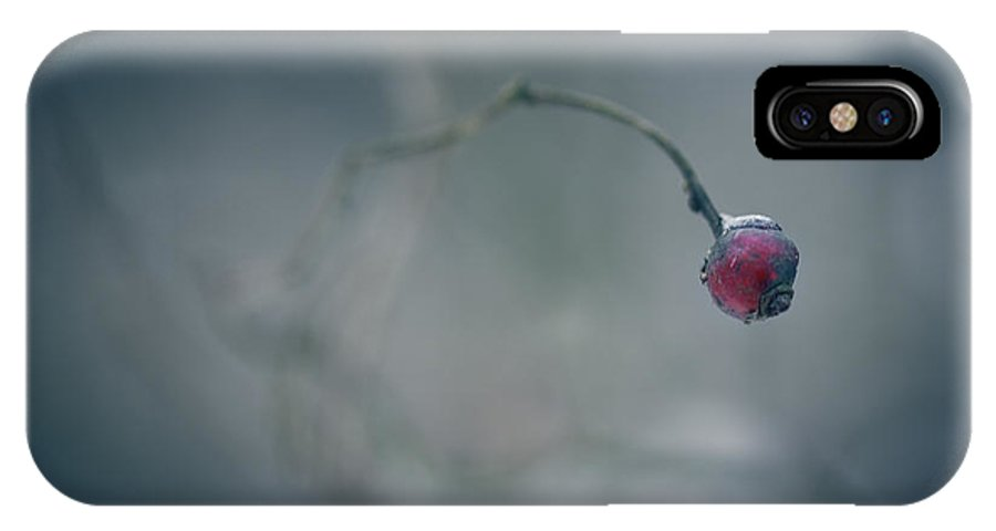 Heart IPhone X Case featuring the photograph Plucked A Heart by Shane Holsclaw