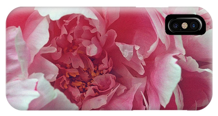 Flowers IPhone X Case featuring the photograph Plush Peony by Kathy Yates