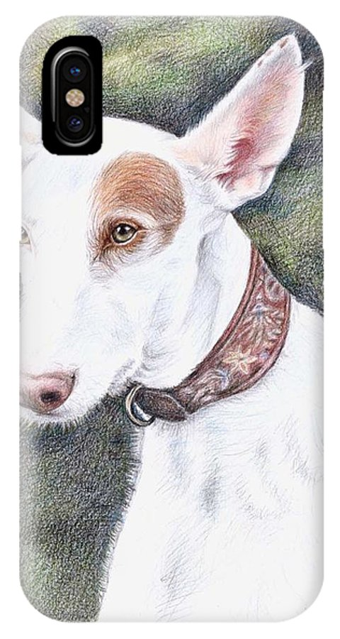 Dog IPhone Case featuring the drawing Podenco Ibicenco by Nicole Zeug