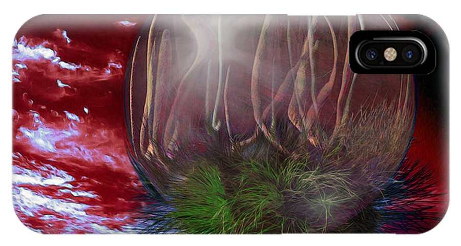 Grass Tree IPhone X Case featuring the digital art Pollen Fire by Chas Hauxby