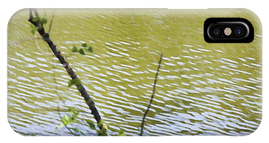 Pond IPhone X Case featuring the painting Pond At Norfolk Botanical Garden 8 by Jeelan Clark