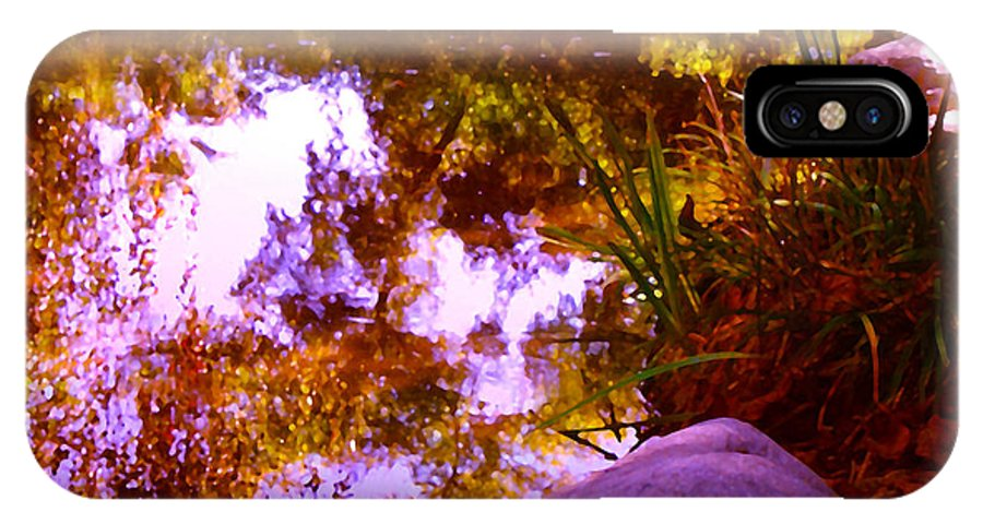 Landscapes IPhone X Case featuring the painting Pond Reflextions by Amy Vangsgard