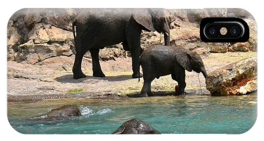 Elephant IPhone X Case featuring the photograph Pool Party by Carol Bradley