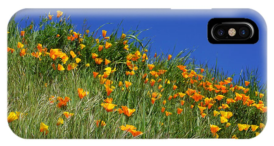 Yellow IPhone X Case featuring the photograph Poppy Flowers Landscape Art Prints Poppies by Baslee Troutman