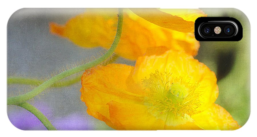 Orange Poppies IPhone X / XS Case featuring the photograph Poppy Triplets Squared by Fraida Gutovich