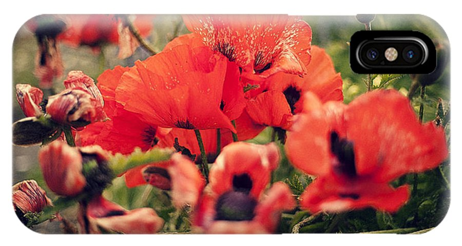 Poppy IPhone X Case featuring the photograph Poppy by Xuesong Liao
