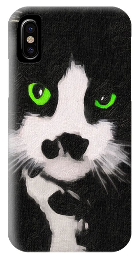 Cat IPhone X Case featuring the digital art Portrait Of Riley by Terry Fiala