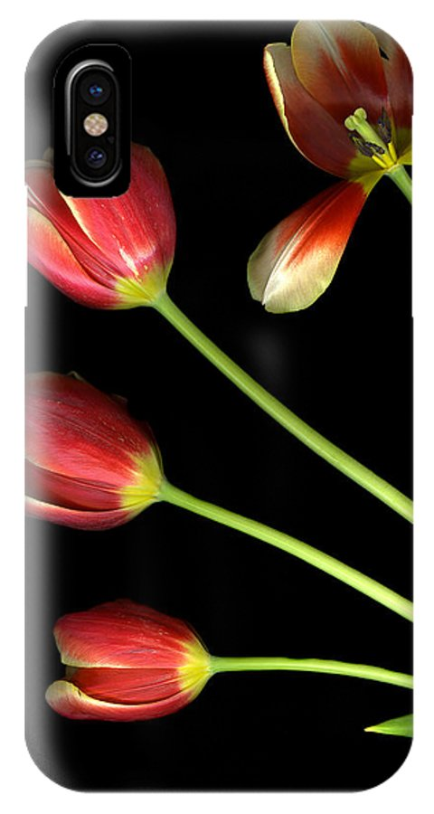 Scanography IPhone X Case featuring the photograph Pot Of Tulips by Christian Slanec