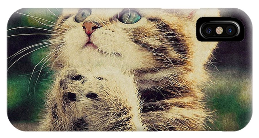 Cat IPhone X Case featuring the photograph Praying Cat by Ingrid Smith-Johnsen
