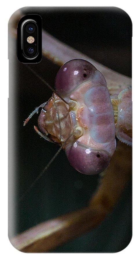 Praying Mantis IPhone X Case featuring the photograph Praying Mantis 3 by Angela Stanton