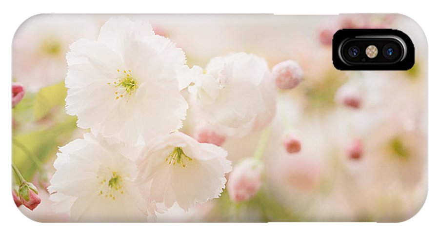 Blossom IPhone X Case featuring the photograph Pretty Blossom by Natalie Kinnear