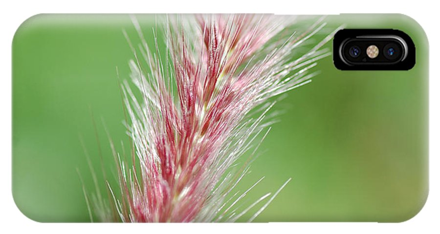 Nature IPhone X Case featuring the photograph Pretty In Pink by Bianca Nadeau