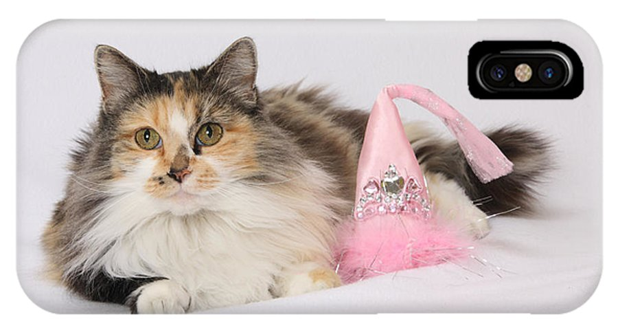 Calico Cat Poster IPhone X Case featuring the photograph Princess by Kimber Butler