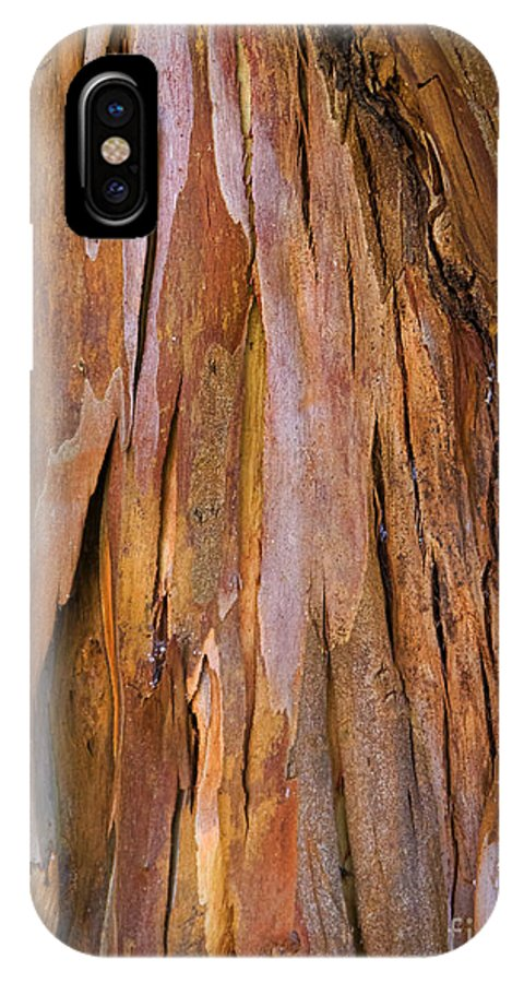 Rhytidome IPhone X Case featuring the photograph Protection by Gillian Singleton