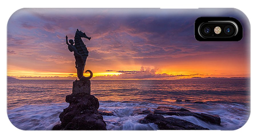 Landscapes IPhone X Case featuring the photograph Puerto Vallarta Seahorse by Shanti Gilbert