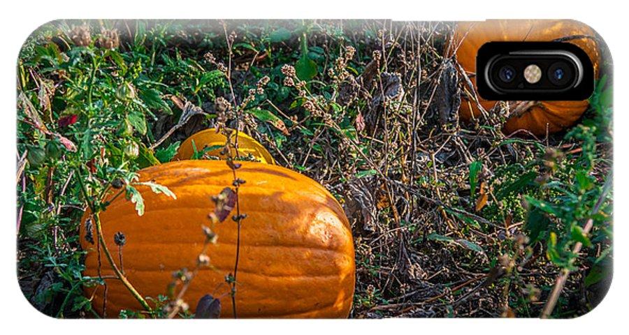 Pumpkin IPhone X Case featuring the photograph Pumpkin Patch by Gene Sherrill