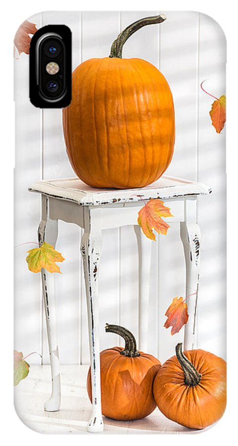 Pumpkins IPhone X Case featuring the photograph Pumpkins For Thanksgiving by Amanda Elwell