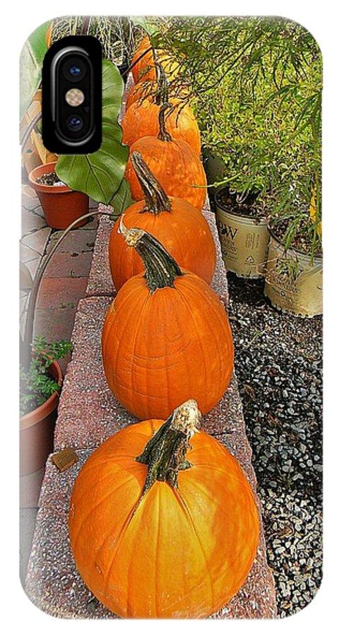 Pumpkin IPhone X Case featuring the photograph Pumpkins In A Row by Jean Goodwin Brooks
