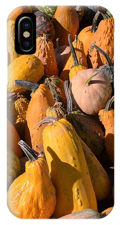 Harvest IPhone X Case featuring the photograph Pumpkins Up Close by Alex Vishnevsky