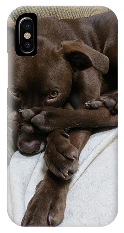Dog IPhone X Case featuring the photograph Puppy Feet by Rita Mueller