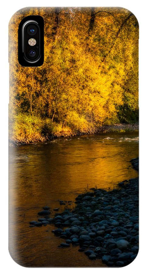 Fall IPhone X Case featuring the photograph Pure Gold by Elaine Goss