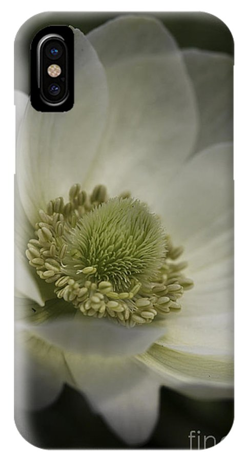 Flower IPhone X Case featuring the photograph Pureness In White by Deborah Benoit