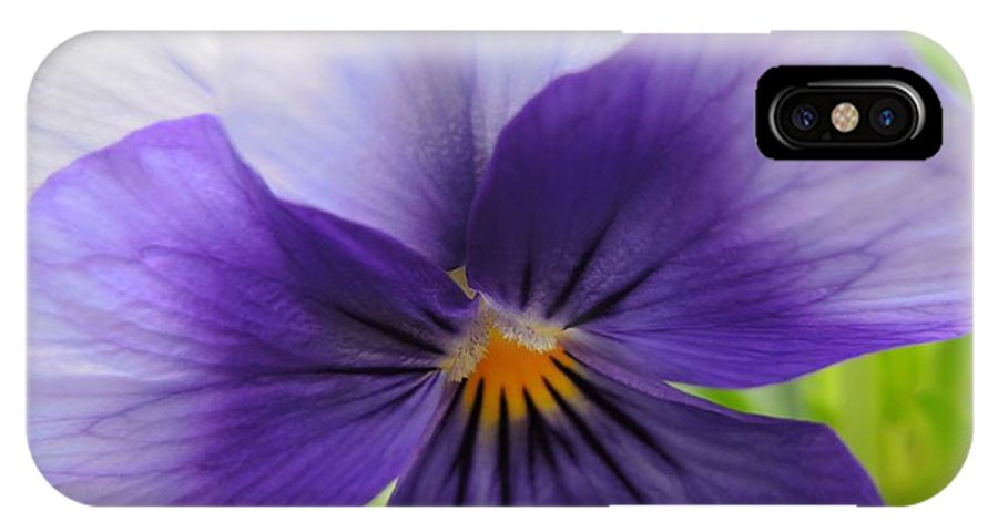 Pansy IPhone X Case featuring the photograph Purple And White Pansy by Brenda Parent