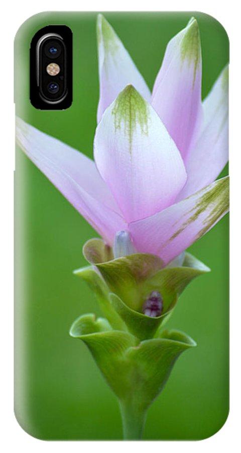 Flower IPhone X / XS Case featuring the photograph Purple Bloom by Caroline Blau