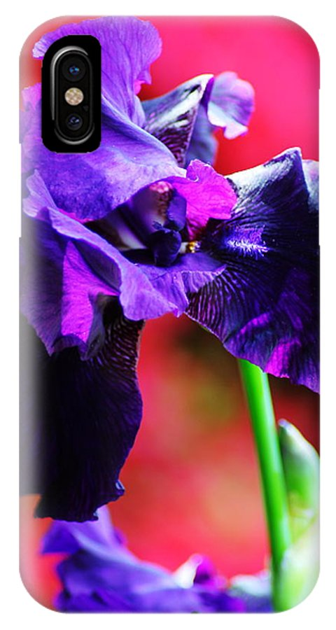 IPhone X / XS Case featuring the photograph Purple Dutch Iris by Peter Feo