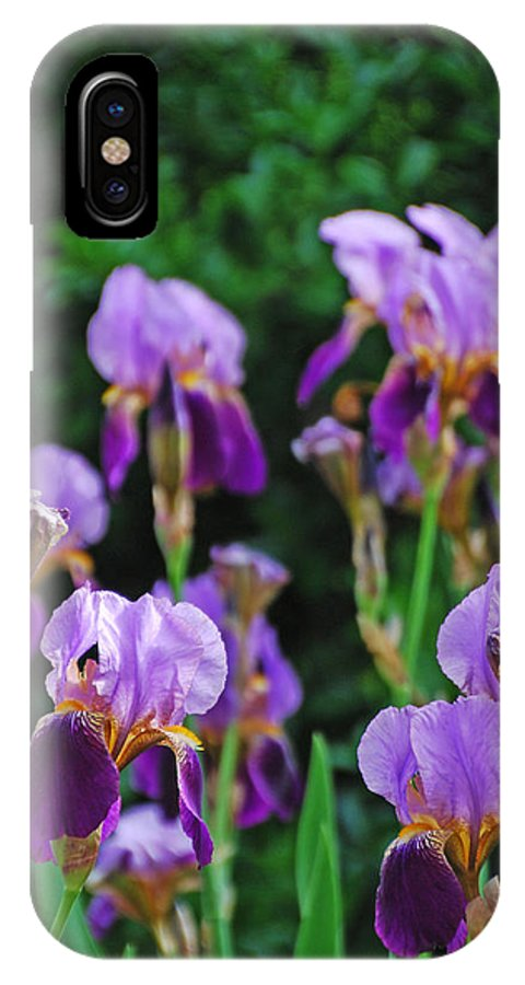 Ankya Klay IPhone X Case featuring the photograph Purple Iris Bliss by Ankya Klay