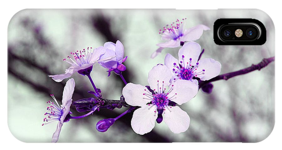 Blossom IPhone X Case featuring the photograph Purple Pink Blossoms by Debra Thompson