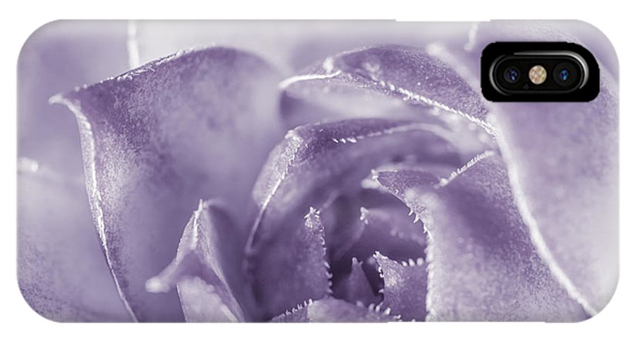 Purple Floral Photography Prints IPhone X Case featuring the photograph Purple Succulent by Lucid Mood
