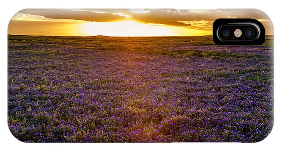 Pawnee National Grasslands IPhone X Case featuring the photograph Purple Sunset by Teri Virbickis