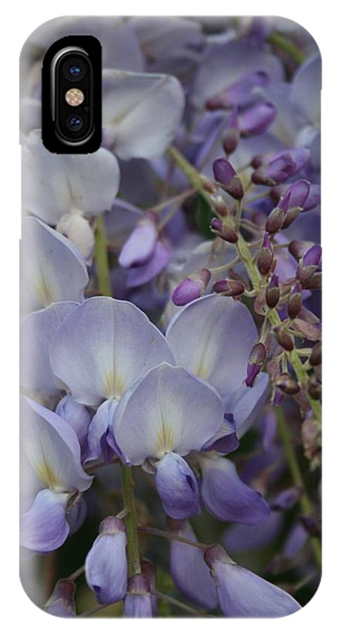 Blossom IPhone X Case featuring the photograph Purple Vine by Taiche Acrylic Art