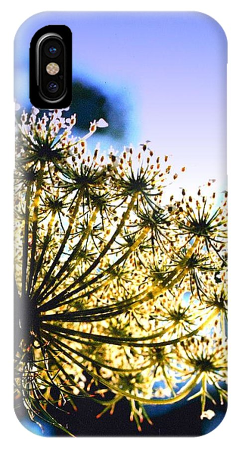 Queen Annes IPhone X Case featuring the photograph Queen Anne's Lace II by Diane Merkle