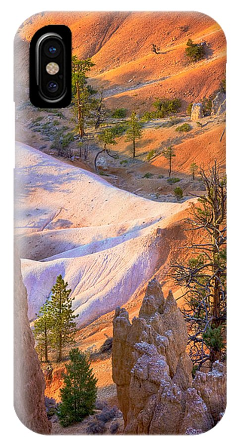 Geographical IPhone X Case featuring the photograph Queen Garden Trail 2008 by Ralph Nordstrom