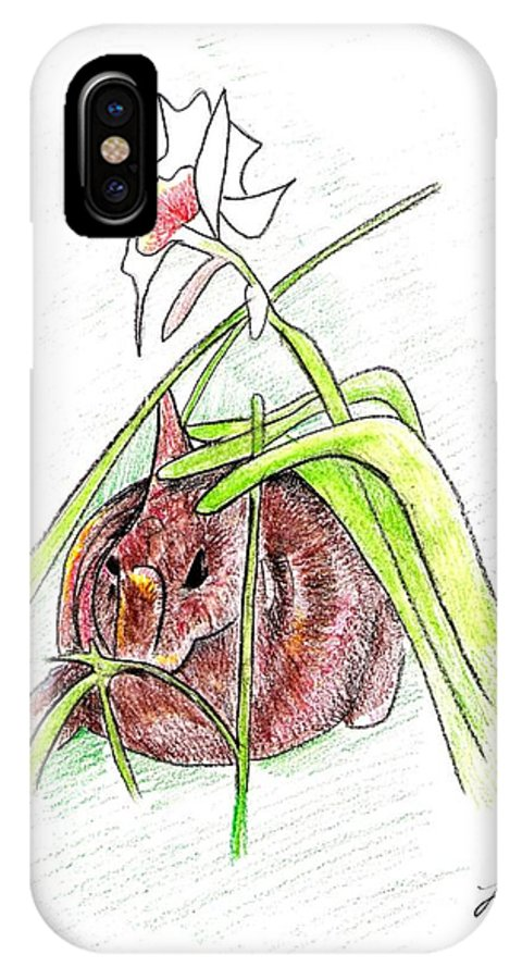 Rabbit IPhone X Case featuring the drawing Rabbit by Loretta Nash