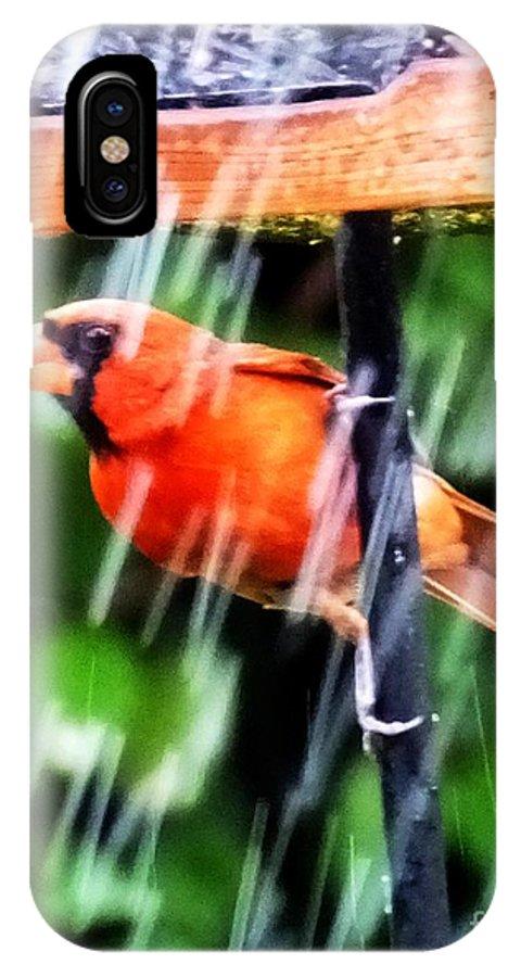 Bird IPhone X Case featuring the photograph Rain Bird by Lizi Beard-Ward