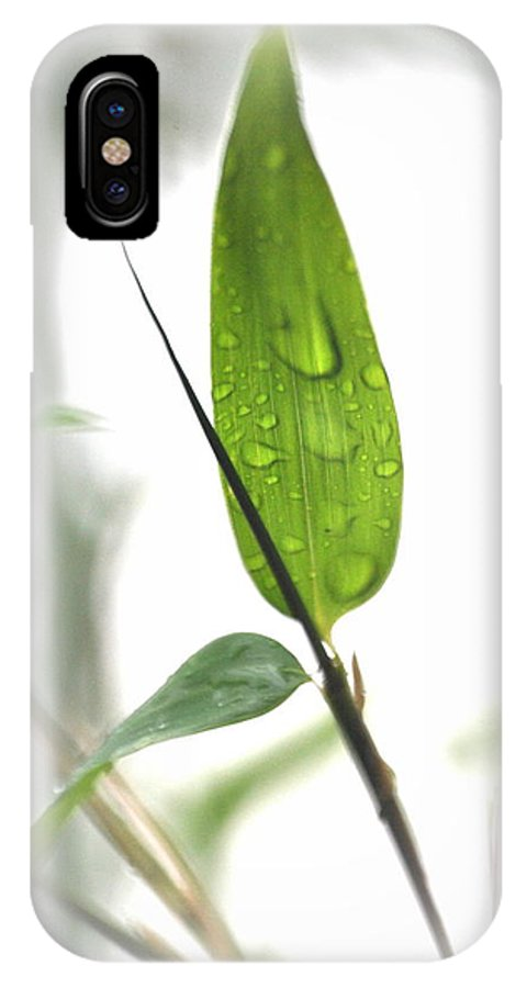 Bamboo IPhone X Case featuring the photograph Rain Drops On Bamboo Leaves by Nathan Abbott