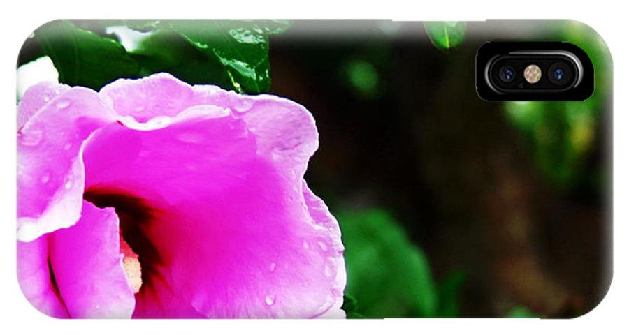 Pink IPhone X Case featuring the photograph Rain Kissed Flower by Jannice Walker